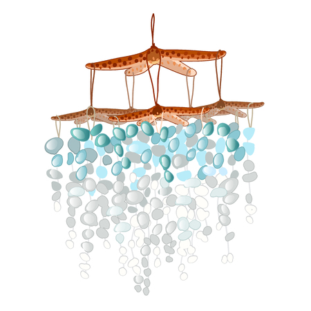 Decor of starfish with polished turquoise stones isolated on white background.