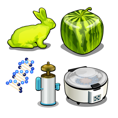 The set of items on the topic of genetic laboratory isolated on white background. Vector cartoon close-up illustration.