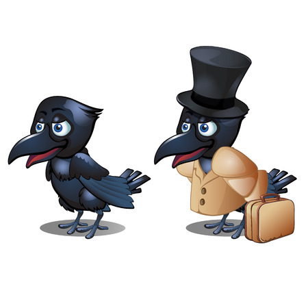The Raven in the clothing with suitcase and hat cylinder isolated on white background. Vector cartoon close-up illustration.