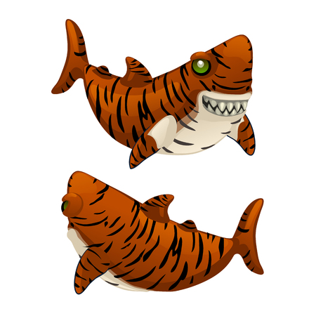Cartoon tiger shark bares his sharp teeth isolated on white background.
