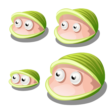 Set of cartoon bivalves shellfish with eyes isolated on white background. Vector illustration.