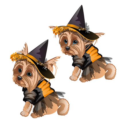 Yorkshire Terrier in witch costume isolated on white background. Cute animated dog in a witch hat. Sketch for greeting card, festive poster or party invitations. The attributes of holiday Halloween. Illustration