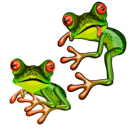Green tree frog hugging an imaginary object and teasing tongue isolated on white background. Vector cartoon close-up illustration.