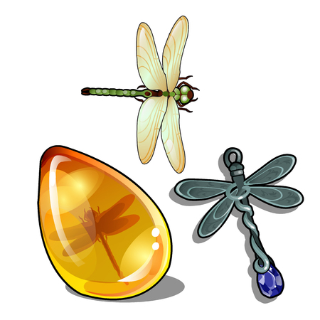 Set of vintage objects and jewelry on the theme of dragonflies isolated on a white background. Insect in amber. Vector cartoon close-up illustration
