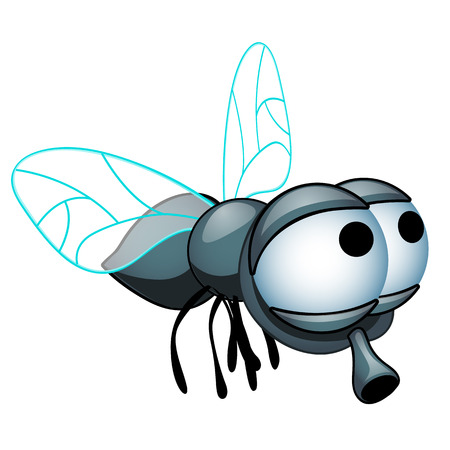 Cartoon fly with big eyes isolated on a white background. Vector cartoon close-up illustration