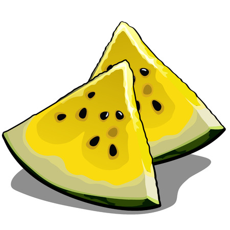 Set of slices of ripe yellow watermelon. Element of a healthy diet. Delicious and healthy tropical fruits isolated on a white background. Vector illustration.