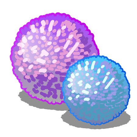 Set of two cartoon glowing pompoms pink and blue colors isolated on a white background. Vector close-up illustration