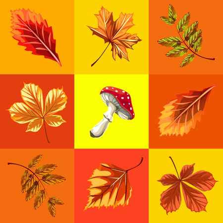 Cute poster or greeting card with modern design on theme of golden autumn. Ornate set of fallen autumn tree leaves of maple, rowan, birch, chestnut and mushroom fly agaric. Vector cartoon close-up