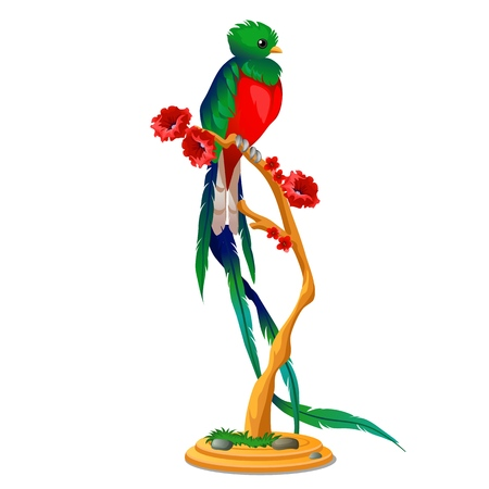Beautiful bird of paradise sitting on a wooden perch with flowers isolated on white background. Vector cartoon close-up illustration