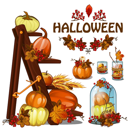 Set of elements to create a poster on theme of Halloween holiday party, greeting card on theme of golden autumn. Fallen autumn tree leaves, pumpkin, rowan, wooden ladder. Cartoon vector close-up.