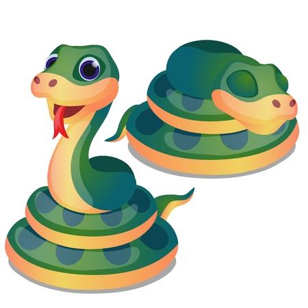 Linda serpiente verde acurrucada aislada sobre fondo blanco. Ilustración de primer plano de dibujos animados de vector Ilustración de vector