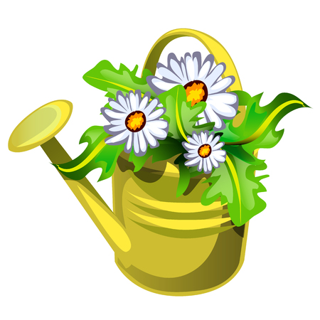 Flower pot in the shape of a watering can yellow color with flowers daisies isolated on white background. Vector cartoon close-up illustration Illustration