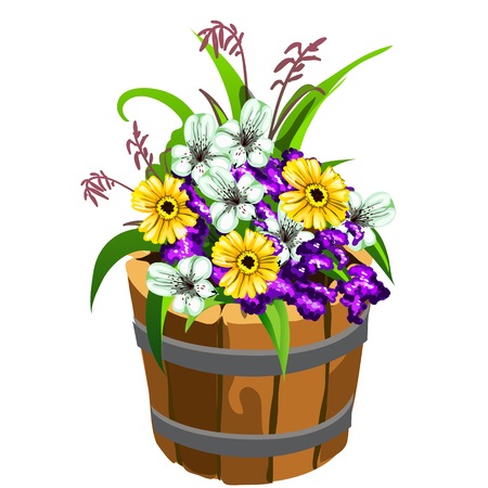 Flower pot in the shape of a old wooden bucket with colorful flowers isolated on white background. Vector cartoon close-up illustration Illustration