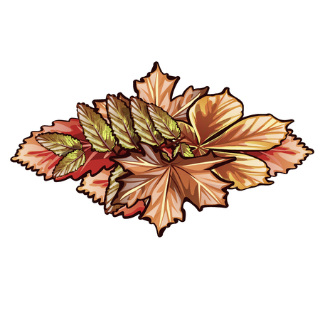 A bunch of dry autumn leaves of trees isolated on white background. Vector cartoon close-up illustration Illustration