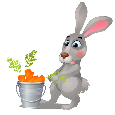 Animated grey hare and steel bucket filled with ripe carrots isolated on white background. Vector cartoon close-up illustration Foto de archivo - 124504814