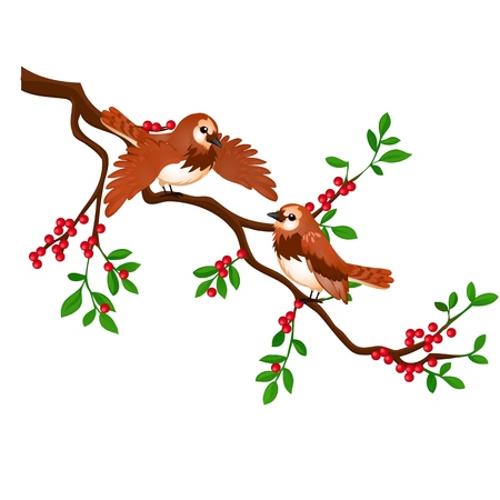 Two birds on a branch with red berries isolated on white background. Vector cartoon close-up illustration