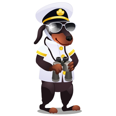 Dog in the costume of the captain of the ship with binoculars isolated on white background. Vector cartoon close-up illustration