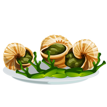 Escargot, a delicious French dish of snails isolated on white