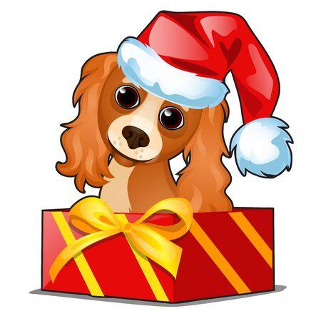 Confezione regalo di Natale con un simpatico cane in berretto di Babbo Natale isolato su bianco