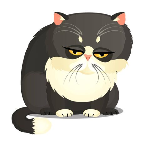 Sad fat gray cat with yellow eyes isolated on a white background. Funny animal. Vector cartoon close-up illustration