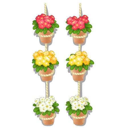 Set of flower pots hanging on the rope isolated on a white background. Vector cartoon close-up illustration.