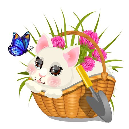 Cute sketch of poster with fluffy animated kitten sitting in wicker basket with pink clover and butterfly with blue wings isolated on white