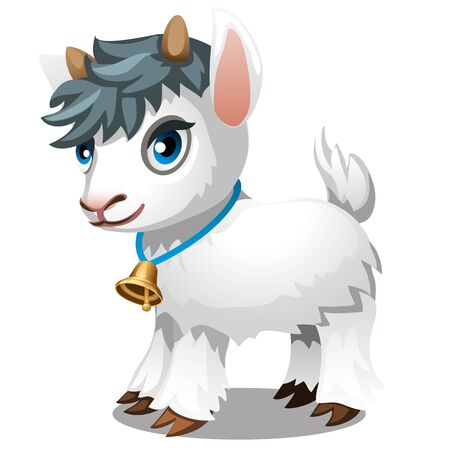 Cute little goat isolated on a white