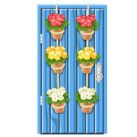 Set of flower pots hanging on the rope on blue vintage wooden door isolated on a white background. Vector cartoon close-up illustration