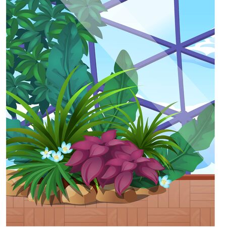 Artificial garden of tropical plants under a glass dome. Poster on the theme of nature. Growing plants in the greenhouse. Vector cartoon close-up illustration