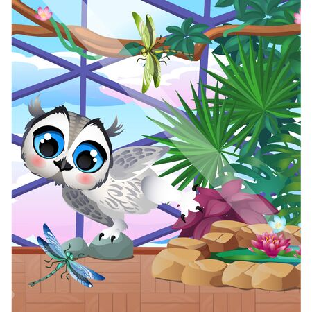 Cute owl in the greenhouse with exotic plants and dragonflies. 版權商用圖片 - 142532812
