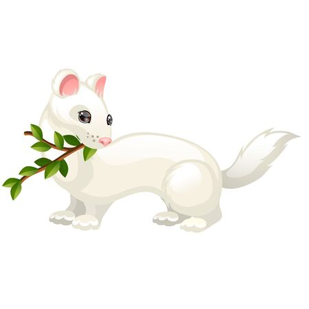 Least Weasel or Mustela nivalis and twig with leaves isolated on white background. Vector cartoon close-up illustration. 版權商用圖片 - 142116984