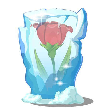 Red flower frozen in ice isolated on a white background. Vector cartoon close-up illustration Ilustração