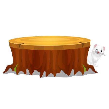 Old stump in the forest and Least Weasel or Mustela nivalis isolated on white background. Vector cartoon close-up illustration Ilustração