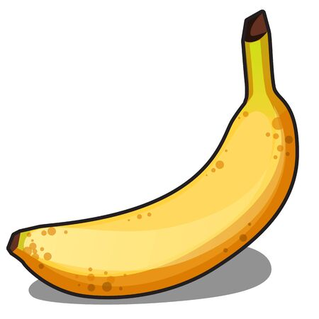 Ripe yellow banana isolated on white background. Vector cartoon close-up illustration.