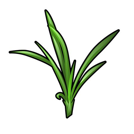 Green grass seedling isolated on white background. Vector cartoon close-up illustration. Ilustração