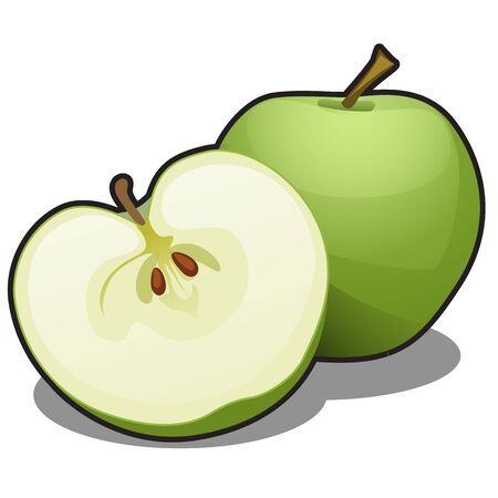 Juicy green apples isolated on a white background. Element of a healthy diet. Vector cartoon close-up illustration. Ilustração