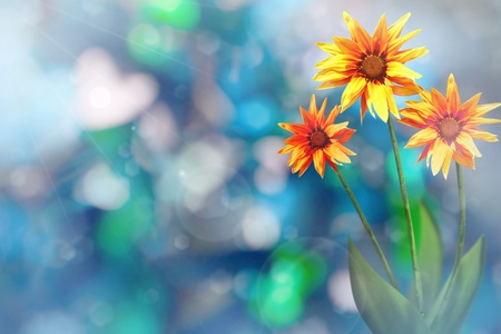 Beautiful live exotic gazania on sunny day with empty on tree leaves blurred bokeh background.