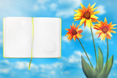 Beautiful live exotic gazania on sunny day with opened note book with blank place for your information on cloudy sky bokeh background.