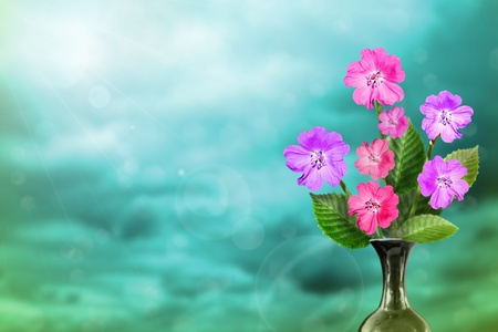 Beautiful live petunia bouquet bouquet in ceramic vase on sunny day with empty on colored sky with clouds background.