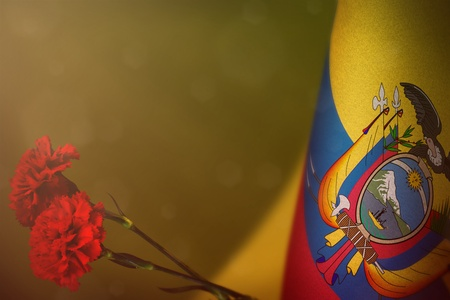 Ecuador flag with two red carnation flowers for honour of veterans or memorial day on yellow dark velvet background. Ecuador glory to heroes of war concept.