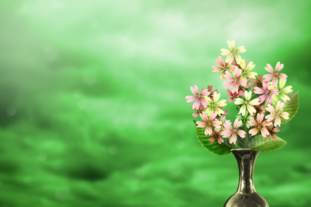 Beautiful live malva or mallow bouquet bouquet in ceramic vase on sunny day with empty space for your content on colored sky with clouds background. Stock fotó