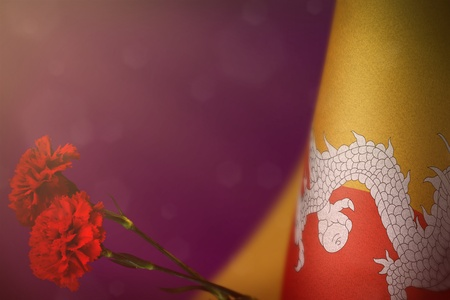 Bhutan flag with two red carnation flowers for honour of veterans or memorial day on pink dark velvet background. Bhutan glory to heroes of war concept.