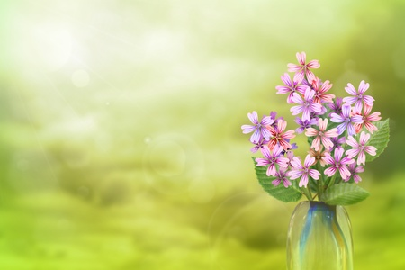 Beautiful live malva or mallow bouquet bouquet in glass vase on sunny day with empty space for your content on colored sky with clouds background. Stock fotó