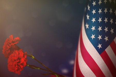 USA flag with two red carnation flowers for honour of veterans or memorial day on blue dark velvet background. USA glory to heroes of war concept.