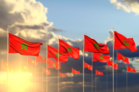 beautiful many Morocco flags on sunset placed in row with soft focus and space for text - any celebration flag 3d illustration