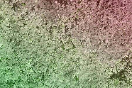 beautiful green vintage rough lichen on rock texture - abstract photo background Banco de Imagens