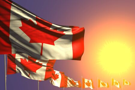 nice memorial day flag 3d illustration  - many Canada flags placed diagonal on sunset with place for content Banco de Imagens