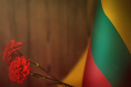 Lithuania flag with two red carnation flowers for honour of veterans or memorial day on orange blurred natural wood wall mockup. Lithuania glory to the heroes of war concept.