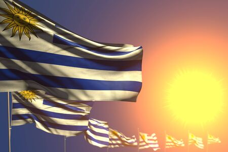 wonderful memorial day flag 3d illustration  - many Uruguay flags on sunset placed diagonal with soft focus and space for your text
