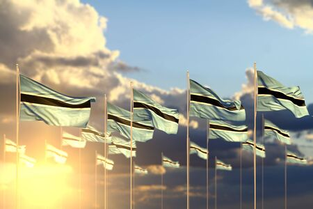 wonderful many Botswana flags on sunset placed in row with selective focus and place for your content - any holiday flag 3d illustration
